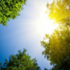 Днес ще е слънчево, а температурите още ще се повишат
