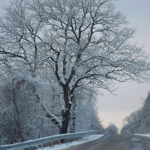 Днес ще е студено и дъждовно, очаква се нова снежна покривка