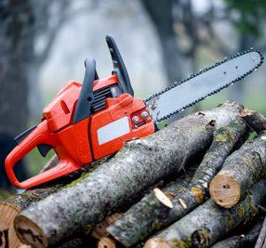 Хванаха 26-годишен, откраднал 2 кубика дърва от чужда къща
