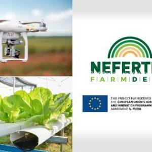 """В петък ще се проведе уебинар на тема """"Нетрадиционни зърнени култури и тяхното отглеждане"""""""