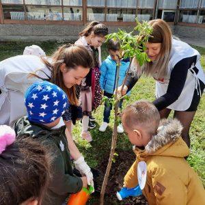 """Деца и учители от ДГ """"Слънчо"""" в Завет засадиха дръвче в двора си"""